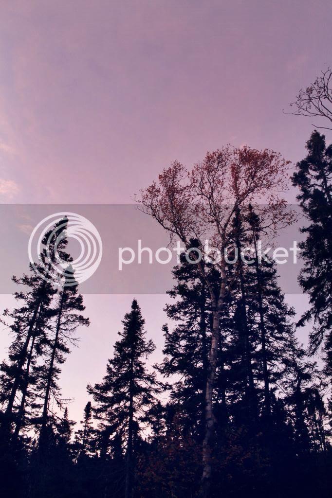 photo 0151ef0ebcbbc5a3fd548d70a1e1158c62d66f9728.jpg