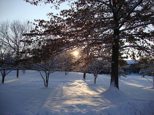 1/21/11 snow