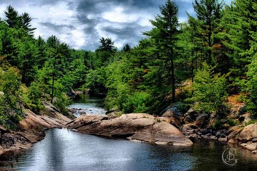 Black River - Solitary Wilderness 1