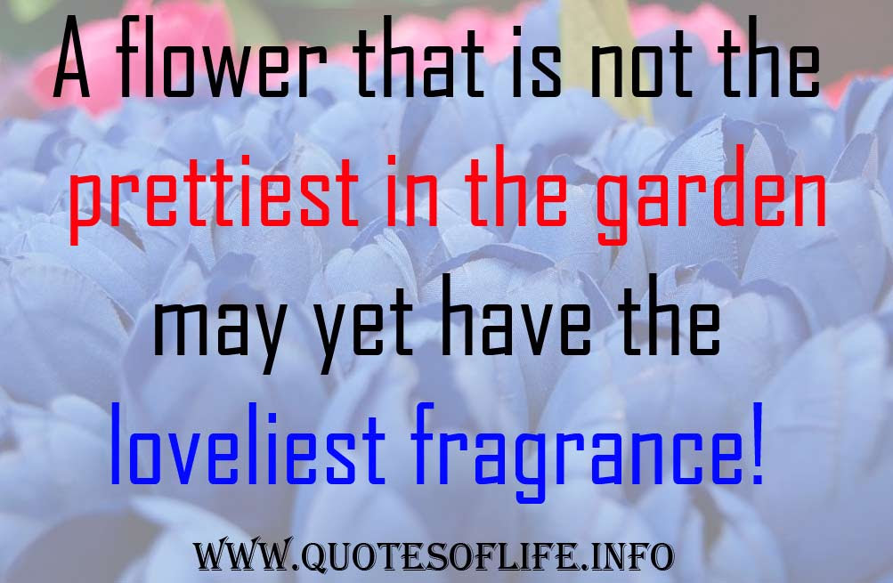 Quotes About Fragrance Of Flowers 65 Quotes