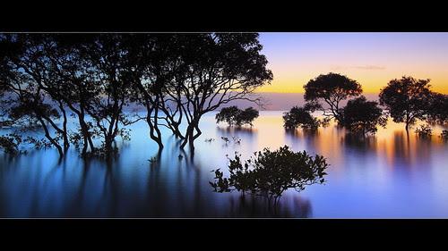 Symphony of Colours por Garry - www.visionandimagination.com