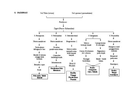 patofisiologi antenatal
