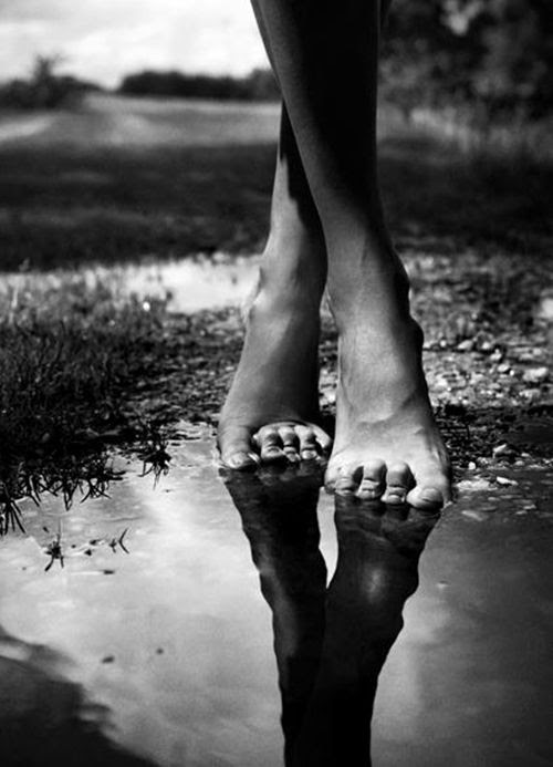 Think of the magic of that foot, comparatively small, upon which your whole weight rests. It's a miracle, and the dance... is a celebration of that miracle     --Martha Washington