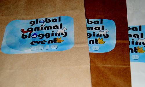 GABE-Bags