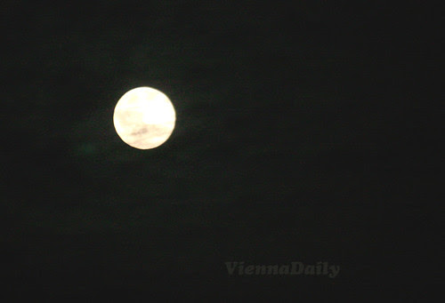 moonlater