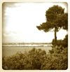 A clifftop view of the Harbour, at Poole.