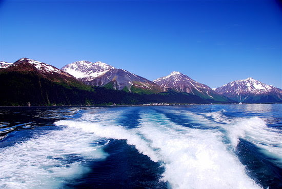 Alaska Wilderness Liing  cruises to alaska and vacation