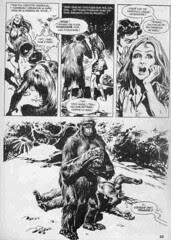 Amor_primate_09_WEB