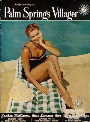 Resultado de imagen de palm springs villager