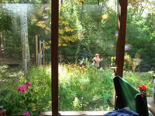 a fairy in the garden, olive bridge