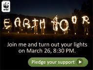 Earth Hour e-card