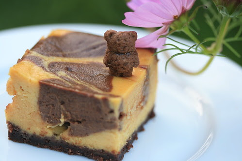 Chocolate Pumpkin Cheesecake Bars
