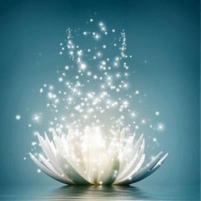 Carte Bonne Fete Zen.Message D Anniversaire Spirituel