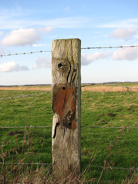 Image result for fence post