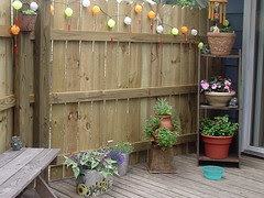 Old Deck, new fence