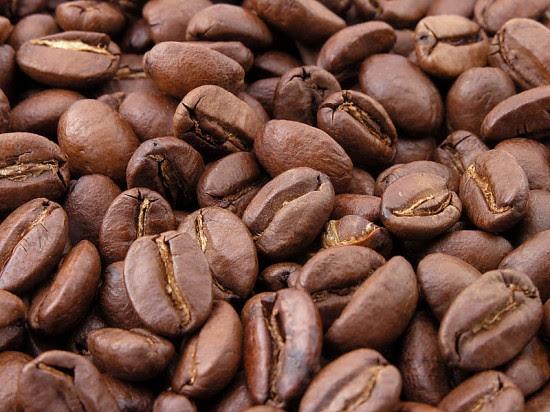 Ελέφαντες «παράγουν» τον… πιο γλυκό καφέ!