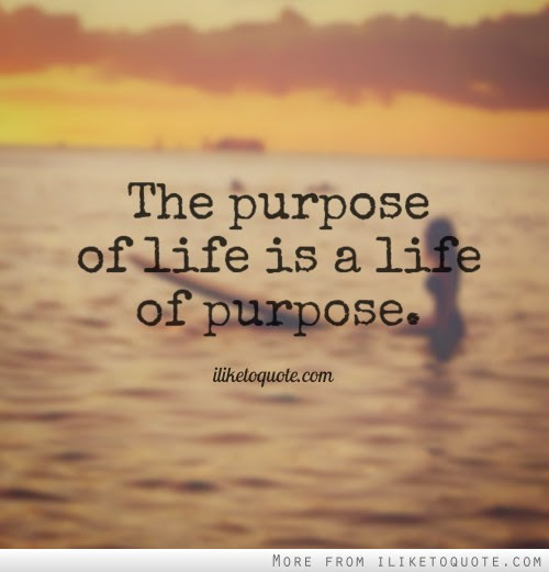 20 Purpose Of Life Quotes And Sayings Collection Quotesbae