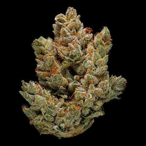 Green Door West   Medical Marijuana & Cannabis Delivery