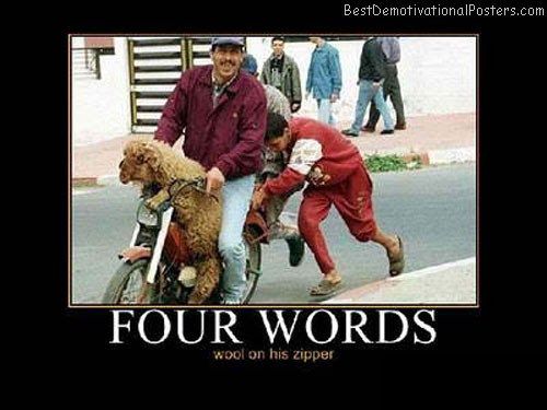 Four Words Demotivational Poster