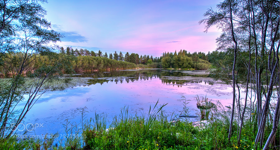 Photograph Zoo Pond HDR 1 by Jay Scott on 500px