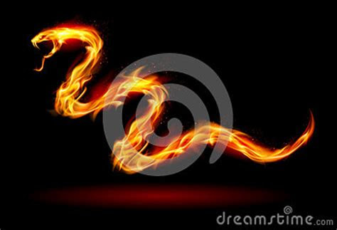 fire snake stock photo image
