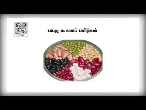 11th Agricultural Science நீர் பருவம் 2 அலகு13 பகுதி2 Kalvi TV