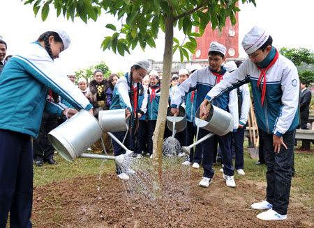 giáo dục, gương, đạo đức, trồng cây