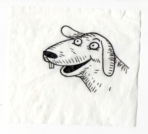 dumbdog