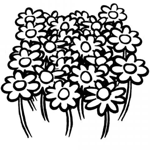 Jardin De Flores Para Colorear Imagui