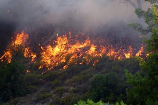 Αρκαδία: Μεγάλη φωτιά στο Ελληνικό Γορτυνίας - Ενισχύονται οι πυροσβεστικές δυνάμεις!