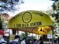 ライオンバス乗り場