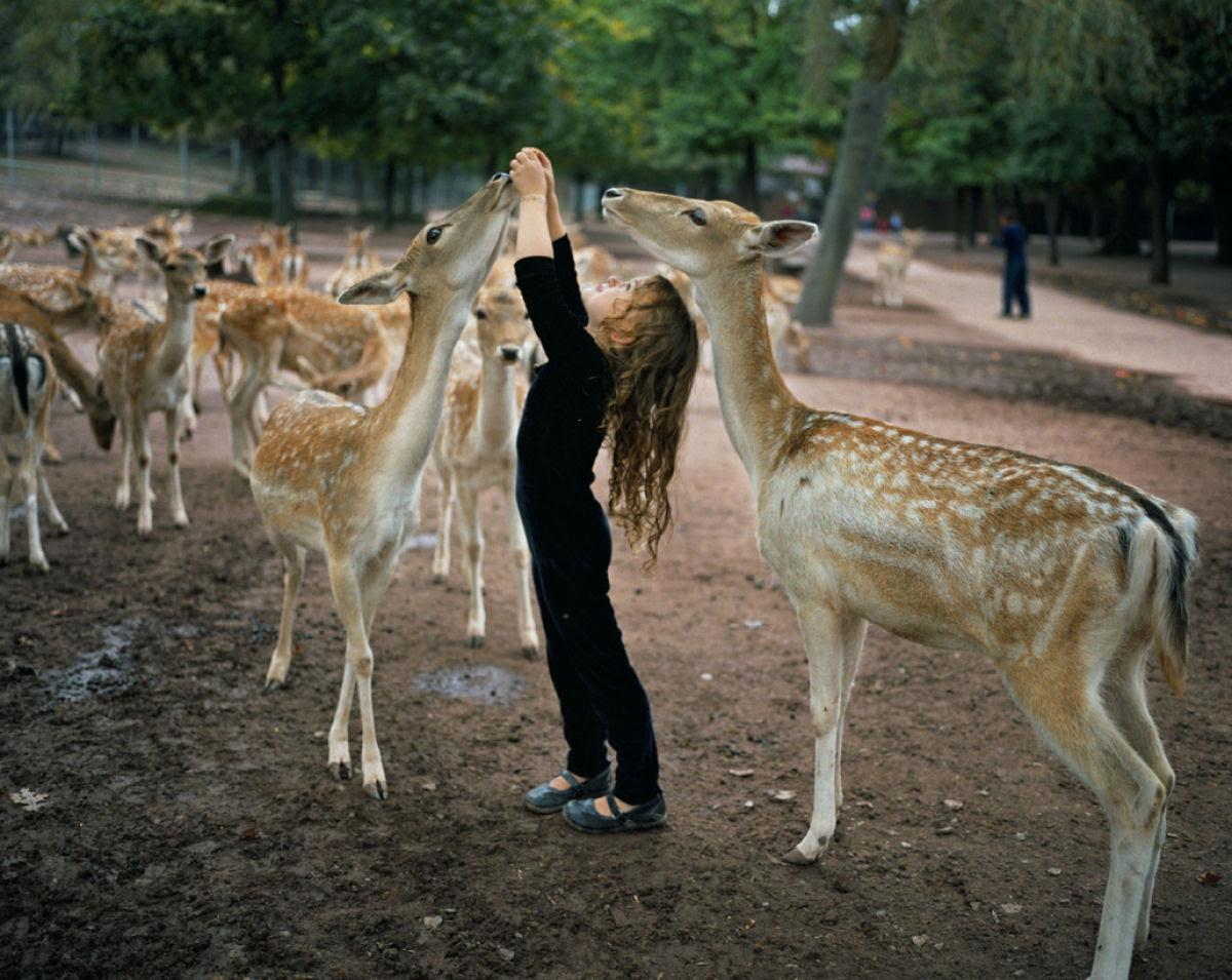 O Mundo de Amelia - A menina que cresceu com os animais e os considera seus irmãos 05