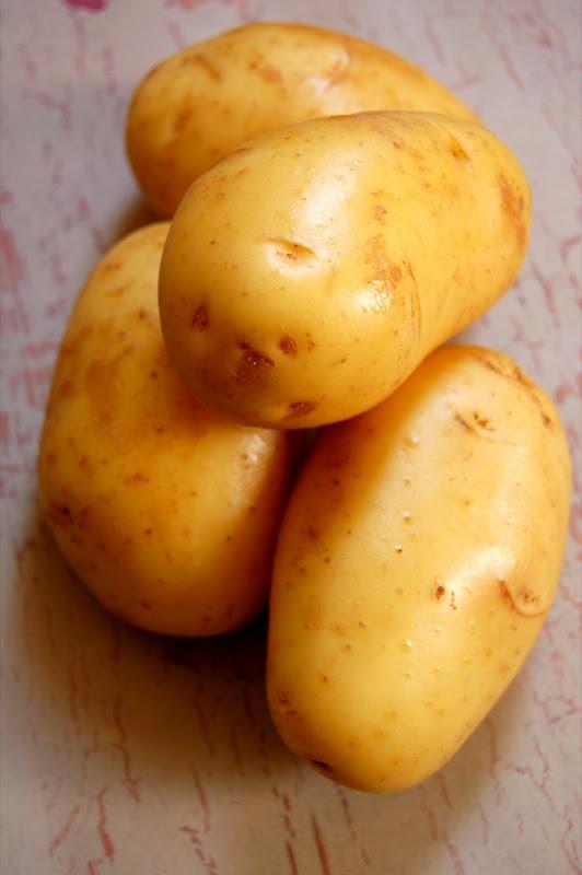 nicola potato© by haalo