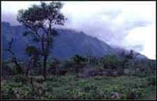 Nilgiri Hills,Coonoor, Coonoor Travel, Coonoor Hotels, Coonoor Tourism, Places to see in Coonoor, Places to stay in Coonoor, Visit Coonoor