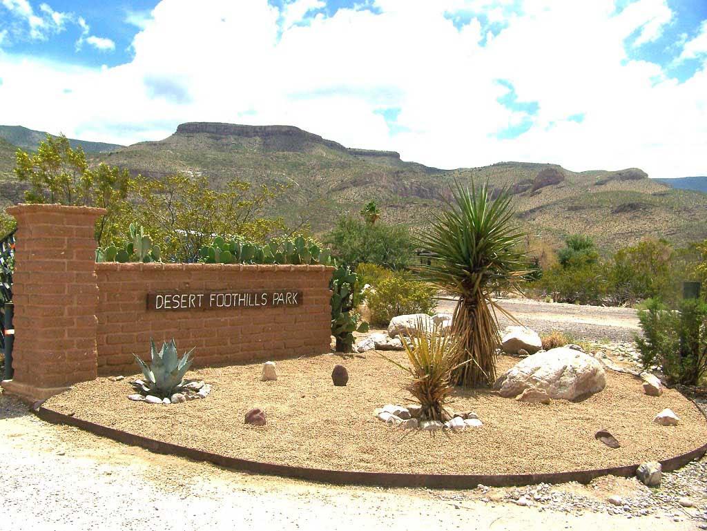 Desert Landscaping Ideas For House Front And Backyard Garden
