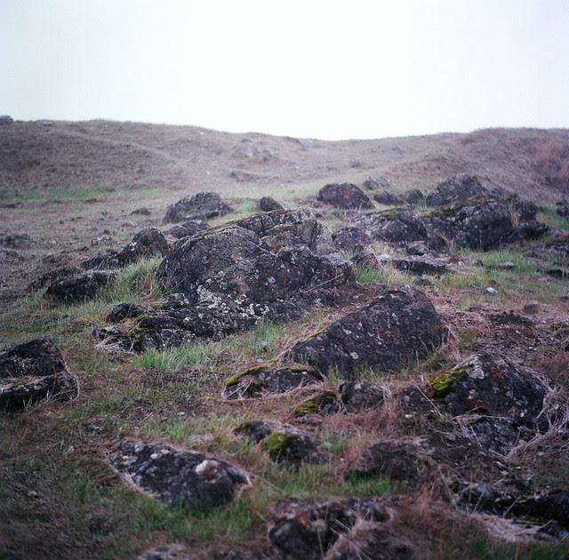 Fog and Rocks
