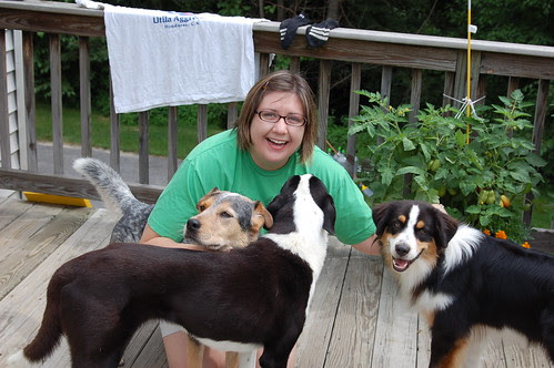 Meeting Stacey's dogs