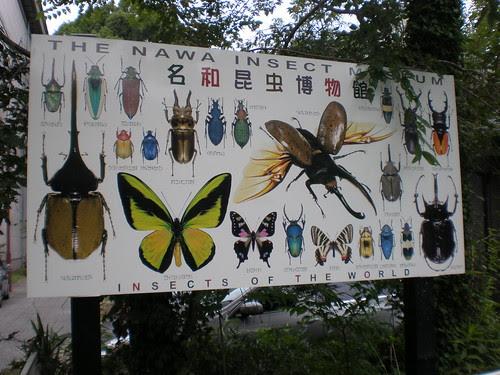 Nawa Insect Museum sign, Gifu, Japan