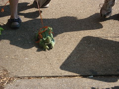 gator dragging