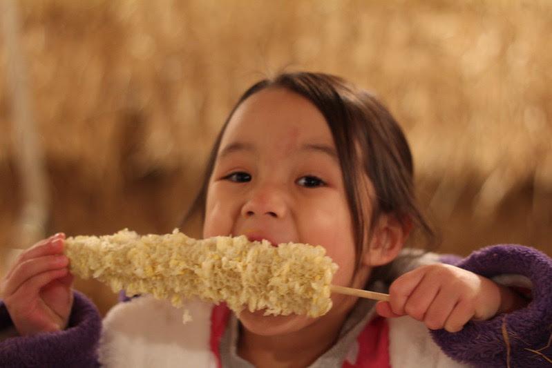wild adventure corn maze by replicate then deviate