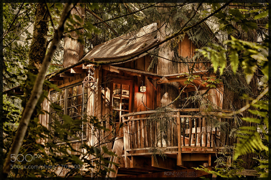 Treehouse by Ron Martinsen (ronmart) on 500px.com - Copyright ® Ron Martinsen - ALL RIGHTS RESERVED