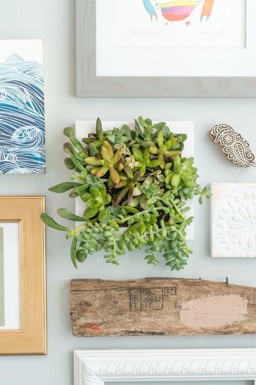 Make It Easy Hanging Succulent Frame Design Mom