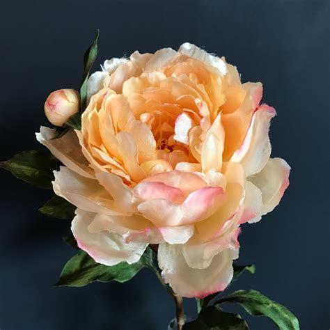 Luxury Large Peach Peony   heavenlyhomesandgardens.co.uk