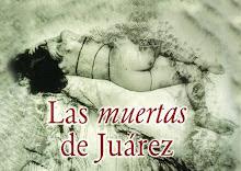 UN ROSTRO DEL FEMINICIDIO EN MÉXICO
