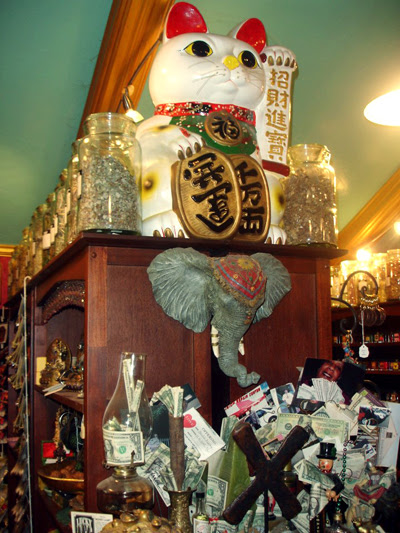 Money-Altar-and-Maneki-Neko-at-the-Lucky-Mojo-Curio-Company