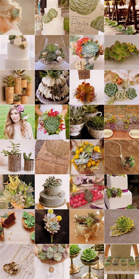 Succulent Wedding Theme Ideas: Bouquets, Decor & Favors