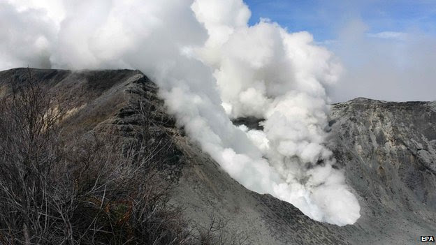 Handout photo released on, 30 October 2014, by the Volcanological and Seismological Network showing Turrialba volcano in Costa Rica.