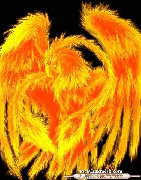 ave_fenix_fuego