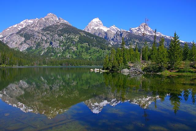 IMG_7837 Taggart Lake