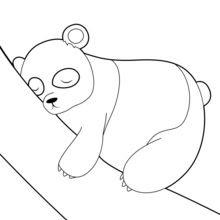 Dibujos Para Colorear Oso Panda Durmido Eshellokidscom